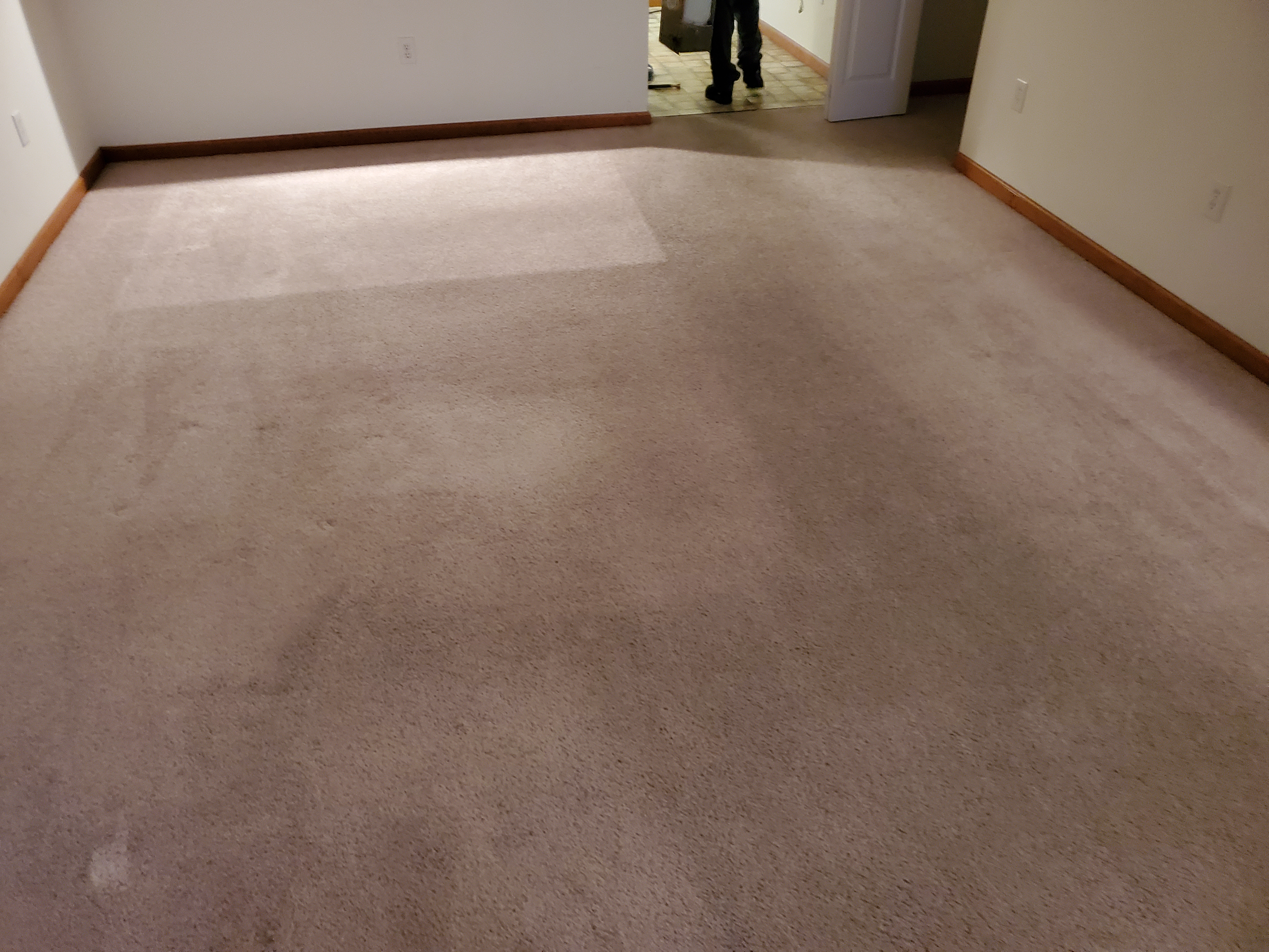 Carpet Before Cleaning