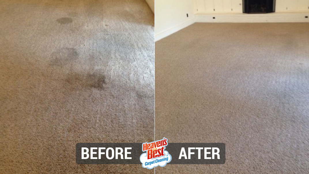 Heaven's Best Carpet Cleaning Marshall