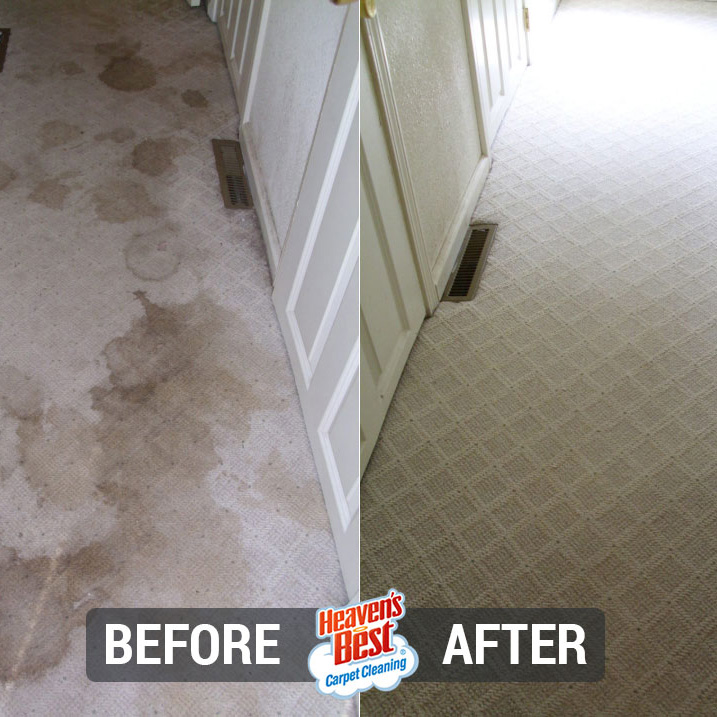 Heaven's Best Carpet Cleaning Folsom CA