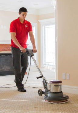 Carpet Cleaner El Dorado Hills CA