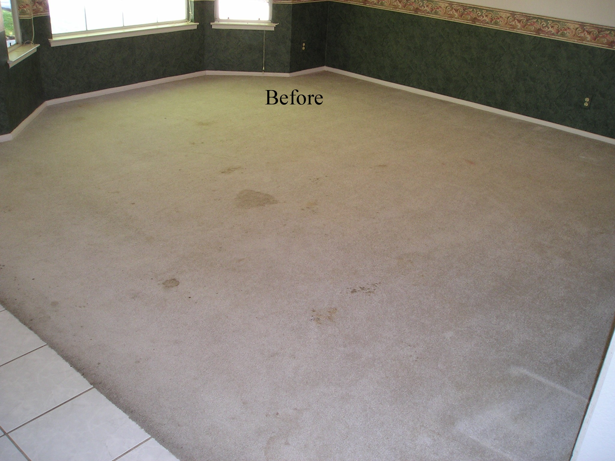 Heaven S Best Carpet Cleaning Lincoln Ne Dry In 1 Hour