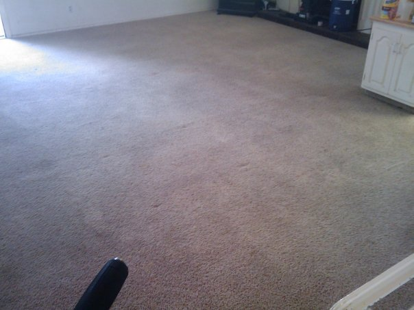 Heaven S Best Carpet Cleaning St George Ut 435 628 5756