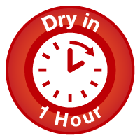 Carpet Dry in 1 Hour