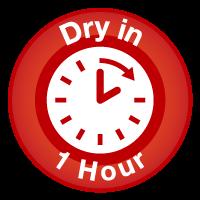 Carpet Dry in 1 Hour